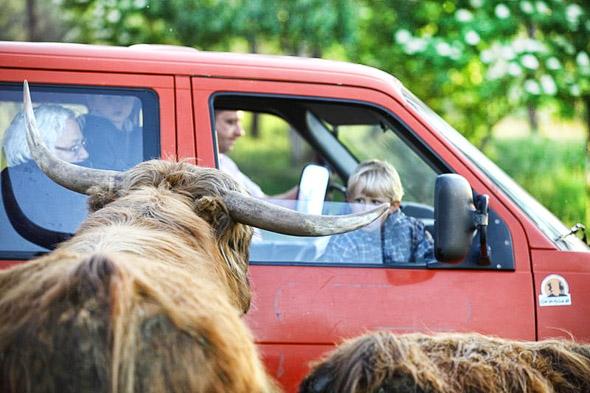 Mazury z dziećmi - Safari ZOO Okrągłe